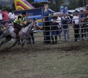 170910-carrera-caballos-molledo-071