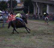 170910-carrera-caballos-molledo-078