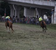 170910-carrera-caballos-molledo-080