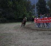 170910-carrera-caballos-molledo-088