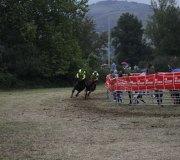 170910-carrera-caballos-molledo-090