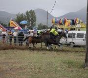 170910-carrera-caballos-molledo-091
