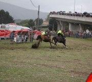 170910-carrera-caballos-molledo-092