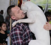 170910-exposicion-canina-san-felices-025