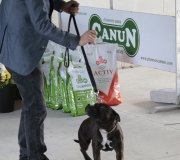 170910-exposicion-canina-san-felices-042