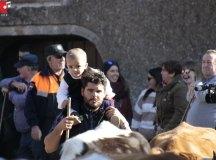 181118-feria-ganado-san-felices-193